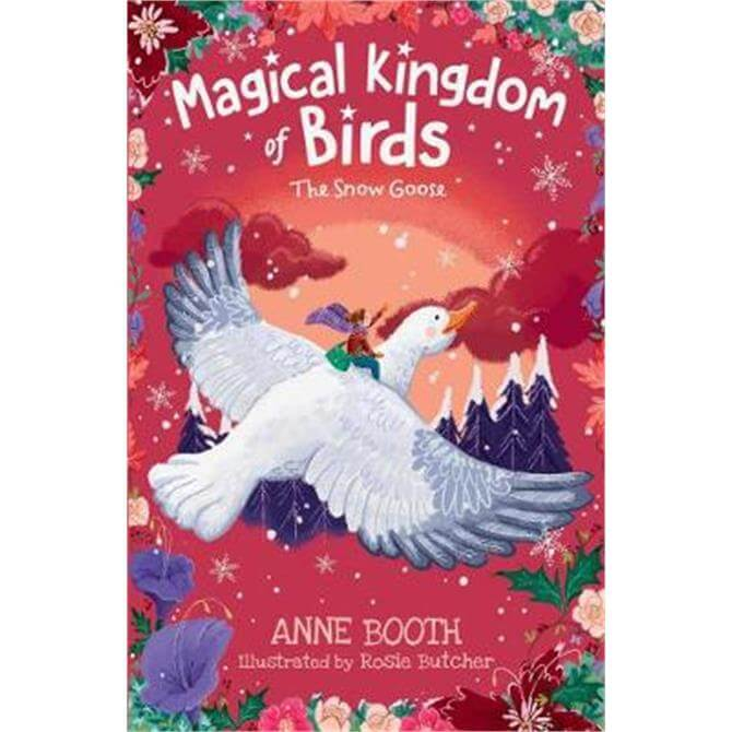 The Magical Kingdom of Birds (Paperback) - Anne Booth