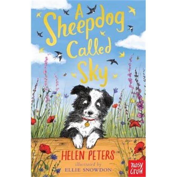 A Sheepdog Called Sky (Paperback) - Helen Peters