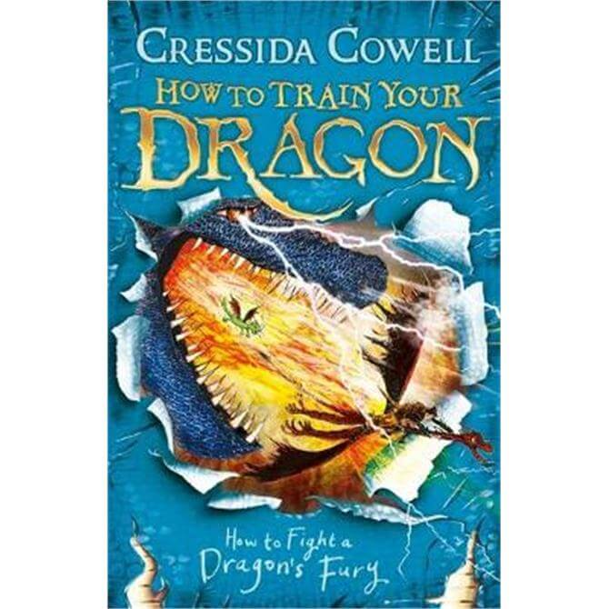 How to Train Your Dragon (Paperback) - Cressida Cowell