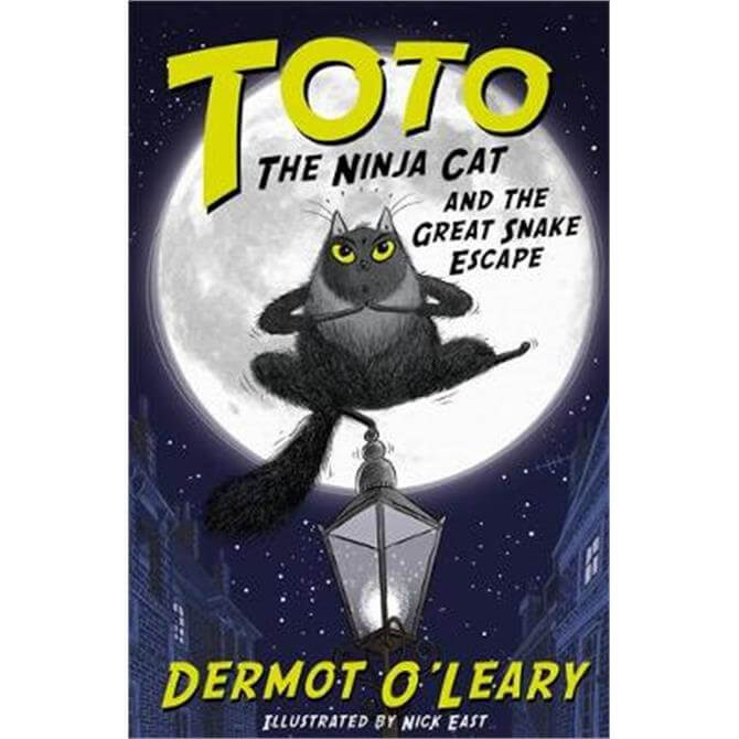 Toto the Ninja Cat and the Great Snake Escape (Paperback) - Dermot O'Leary