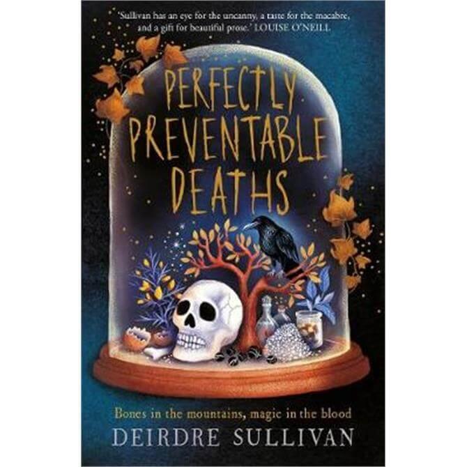 Perfectly Preventable Deaths (Paperback) - Deirdre Sullivan