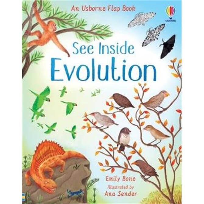 See Inside Evolution - Emily Bone