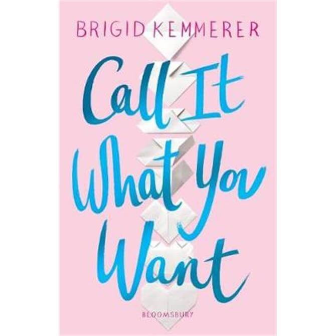 Call It What You Want (Paperback) - Brigid Kemmerer