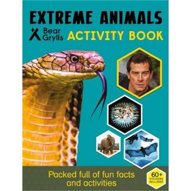Bear Grylls Sticker Activity (Paperback)