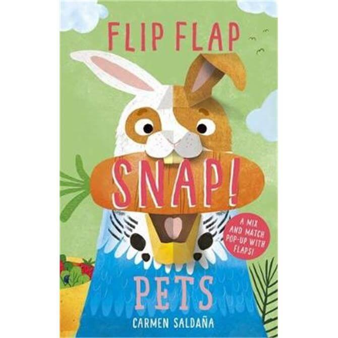 Flip Flap Snap (Hardback) - Carmen Saldana