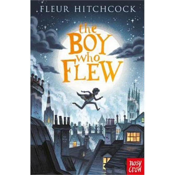 The Boy Who Flew (Paperback) - Fleur Hitchcock