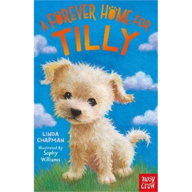 A Forever Home for Tilly (Paperback) - Linda Chapman