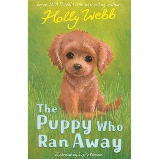 The Puppy Who Ran Away (Paperback) - Holly Webb