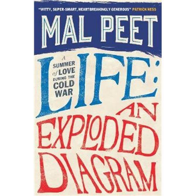 Life (Paperback) - Mal Peet