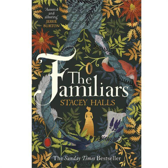 The Familiars By Stacey Halls (Paperback)