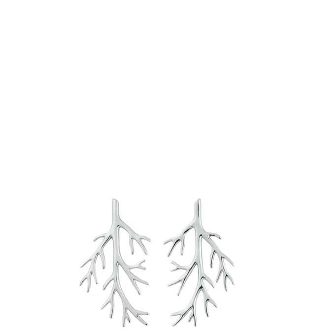 Edblad Branch Steel Earrings