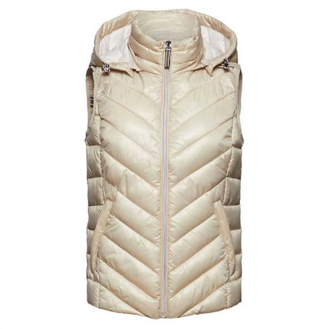 Esprit Thinsulate Padded Gilet