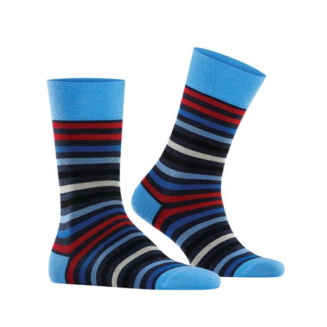 Falke Tinted Stripe Socks