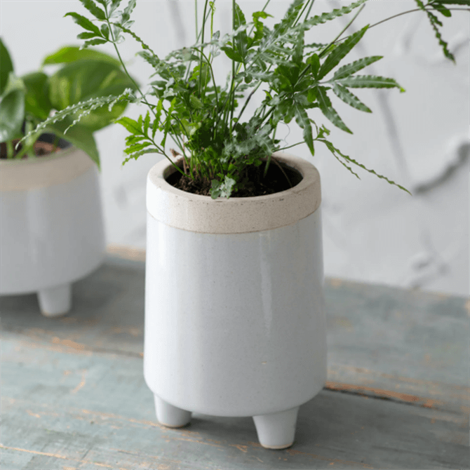 Garden Trading Tall Sherston Pot Small