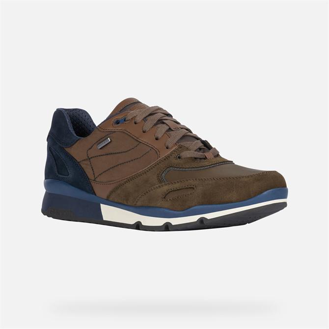 Geox Sandford ABX Sneakers in Dark Olive & Navy