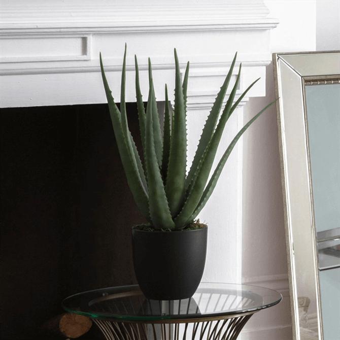 Gallery Direct Faux Aloe