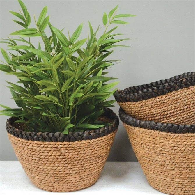 Grand Illusions Seagrass Baskets