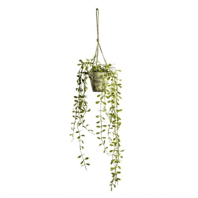 Gallery Direct Hanging Boxwood with Rustic Pot