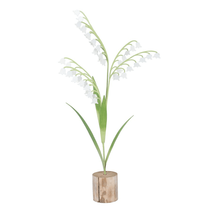 Gisela Lily Of The Valley on Log Large