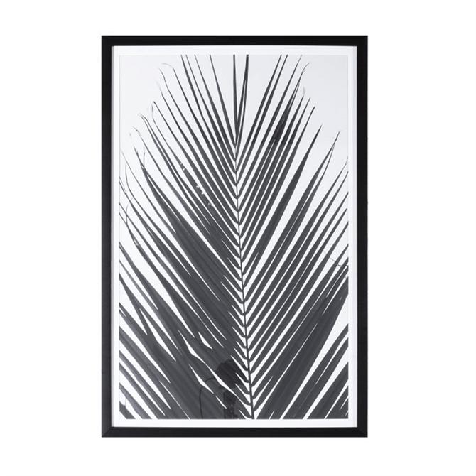 Monochrome Palm Framed Art