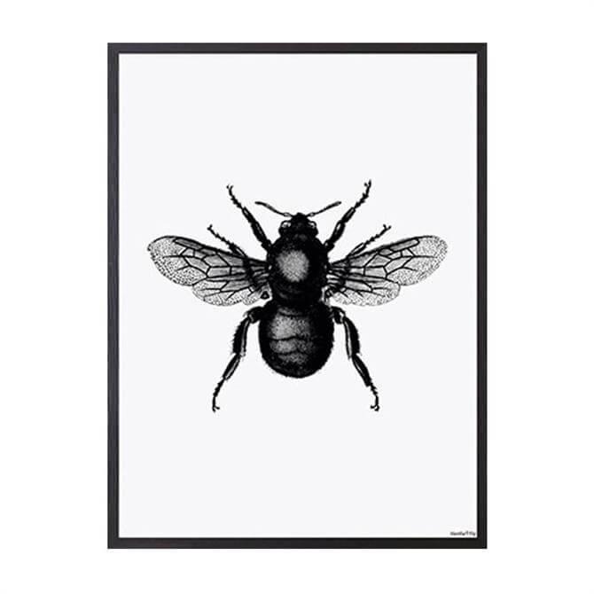 Vanilla Fly Bee Print White