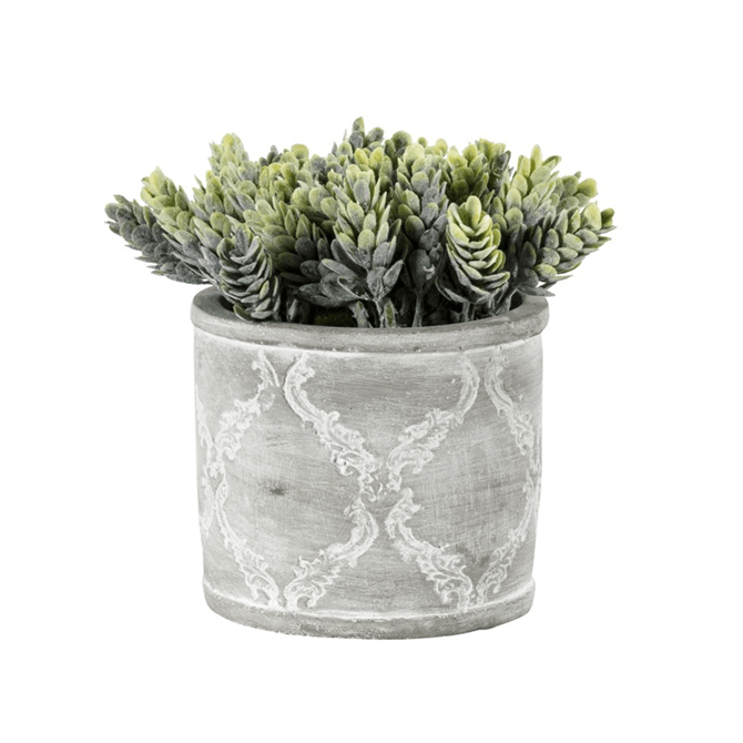 Gallery Direct Hops Green with Patterned Pot