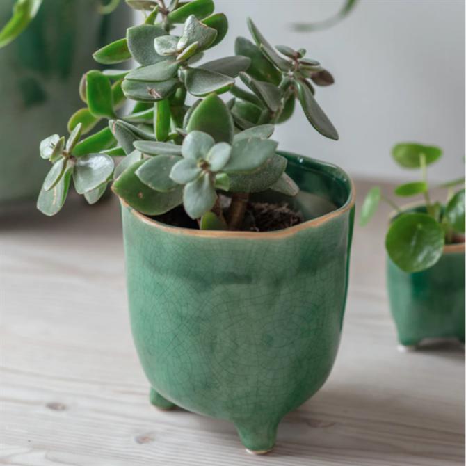 Garden Trading Forest Green Positano Ceramic Pot Medium