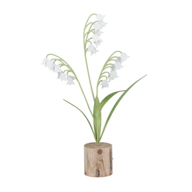 Gisela Lily Of The Valley on Log Small