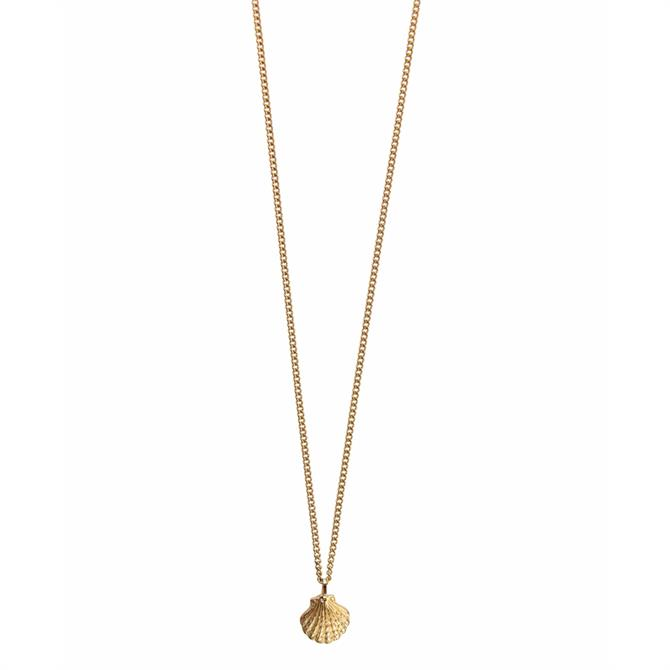 Hultquist Small Shell Necklace