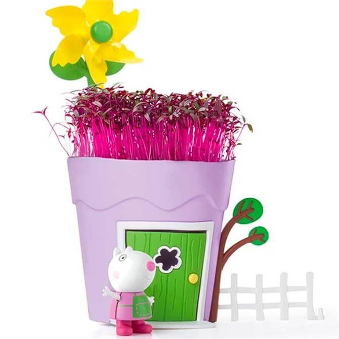 Peppa Pig Pots Suzy Sheep Growing Kit