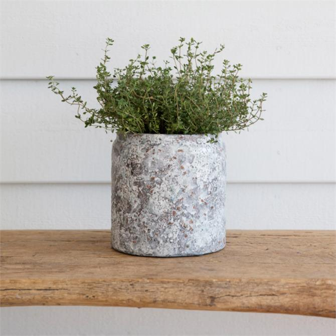 Garden Trading Withington Pot Ceramic Large