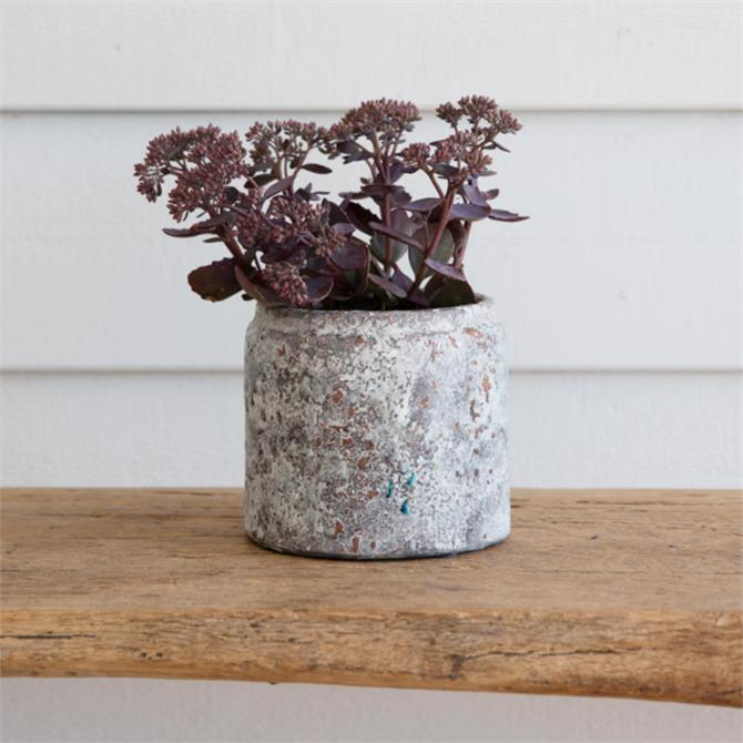 Garden Trading Withington Pot Ceramic Small