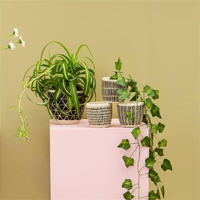 Sass & Belle Scandi Boho Mini Planters Set