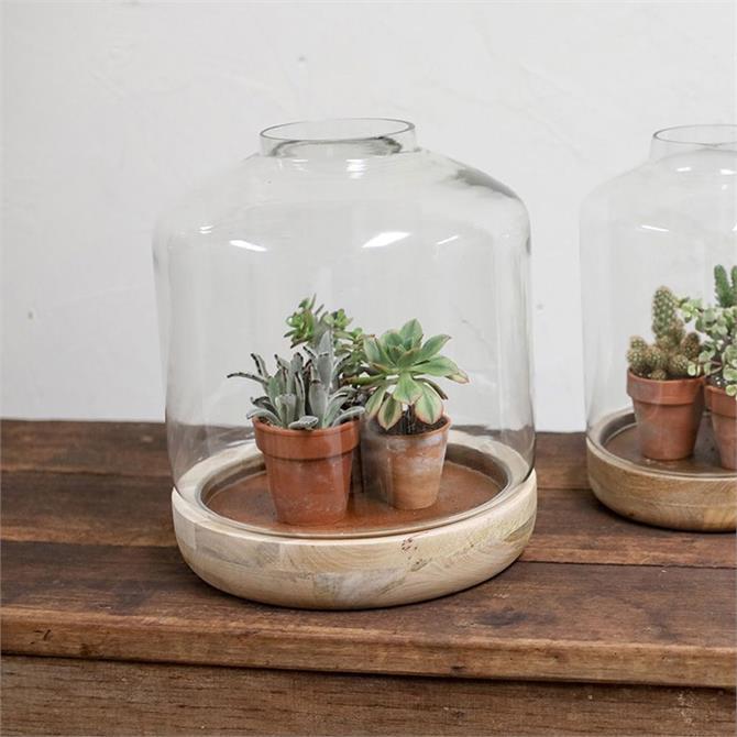 Nkuku Igara Mango Wood Terrarium