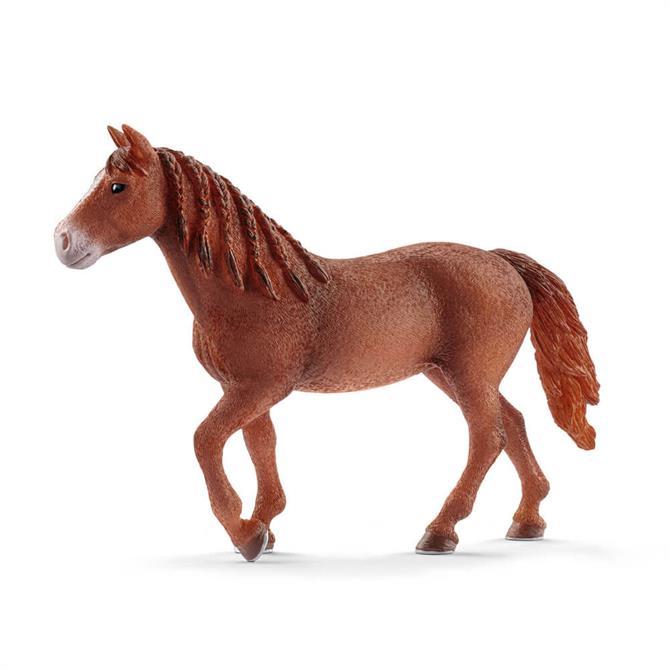 Schleich Morgan Horse Mare 13870