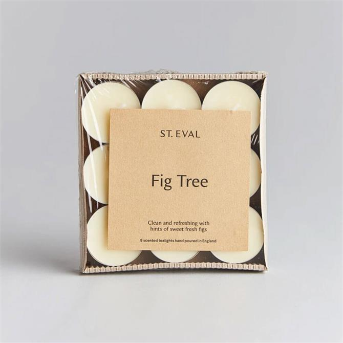 St Eval Fig Tree Scented Tealights
