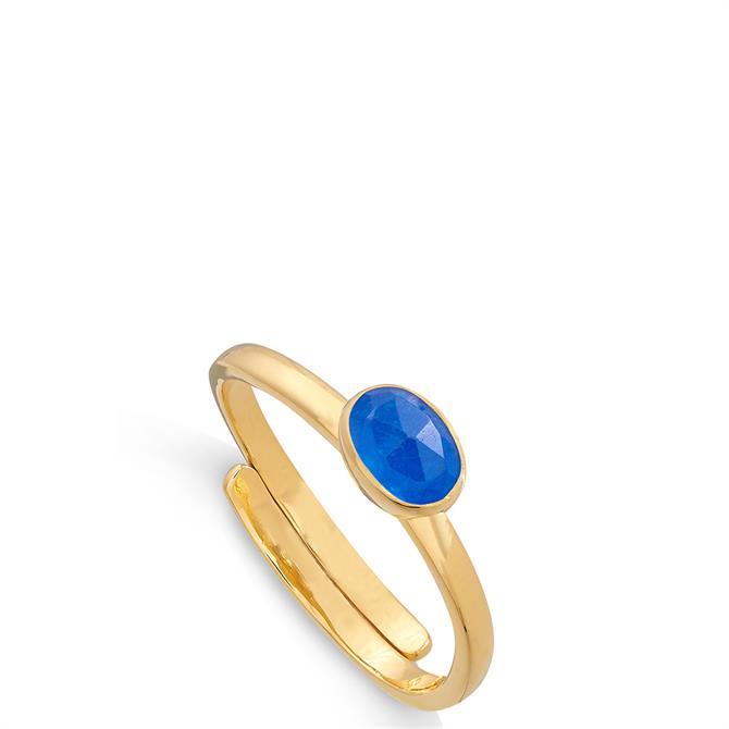 SVP Atomic Micro 18 Carat Gold Vermeil Adjustable Ring