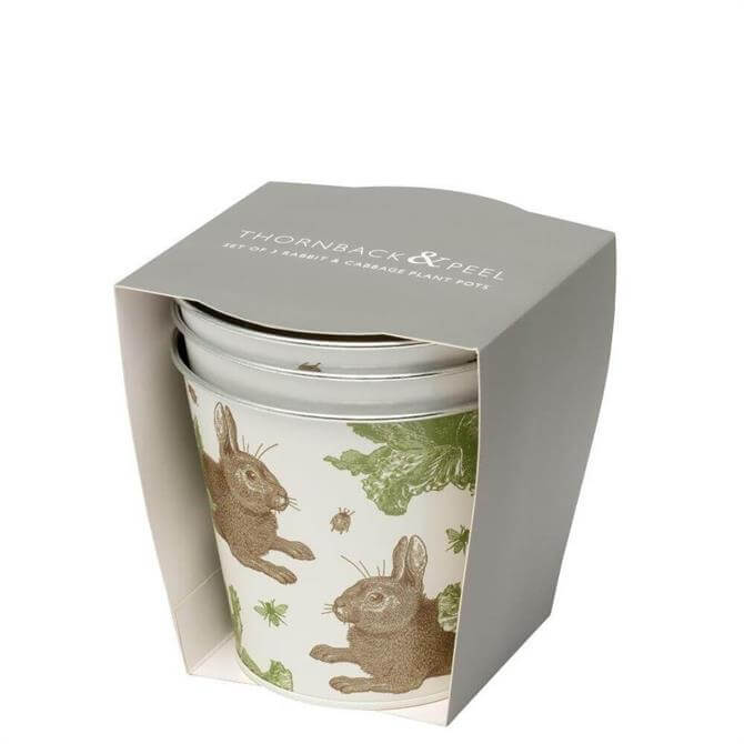 Thornback & Peel Rabbit & Cabbage Set of 3 Plant Pots