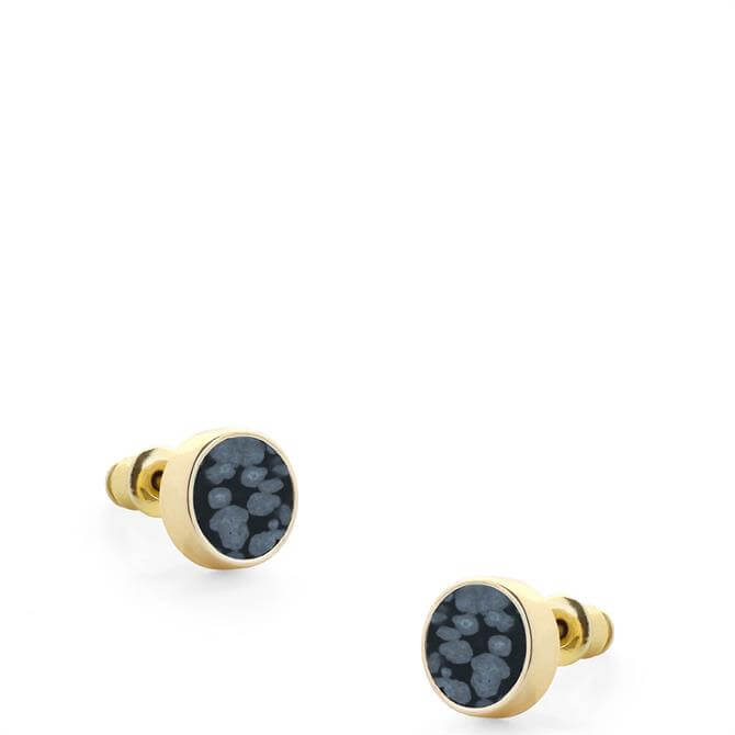 Tutti & Co Polar Stud Earrings