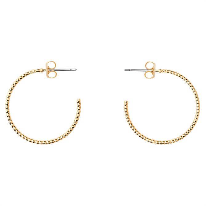 Whistles Engraved Hoop Earrings