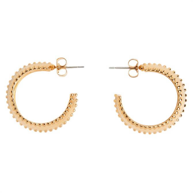 Whistles Mini Studded Hoop Earrings