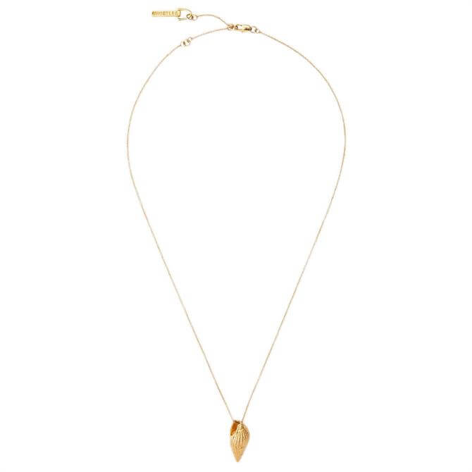 Whistles Shell Pendant Necklace
