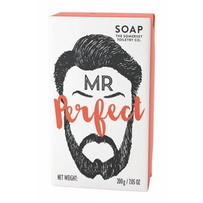 Somerset Toiletry Co Mr Beard Men's Soap - Mr Perfect