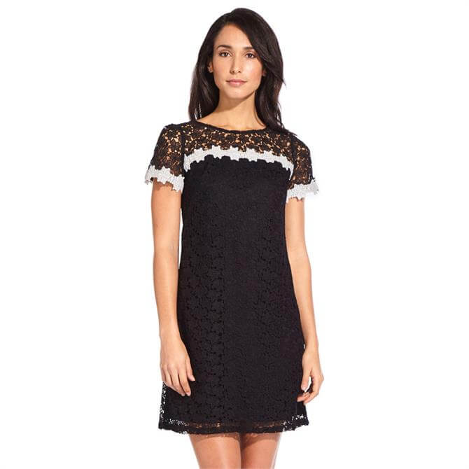 Adrianna Papell Floral Two Tone Lace Dress