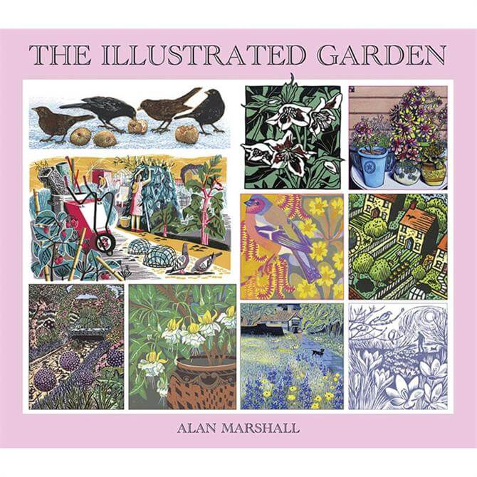 The Illustrated Garden by Alan Marshall (Paperback)