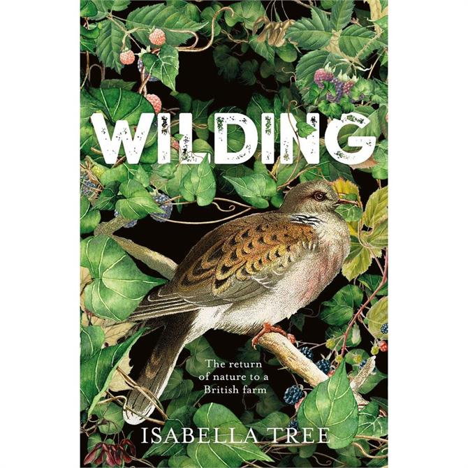 Wilding: The Return of Nature to a British Farm By Isabella Tree (Paperback)