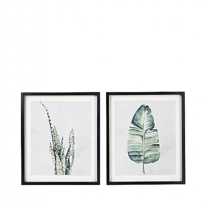 Broste Copenhagen Green Plants & Fir Wood Assorted Wall Art (Only one is supplied)