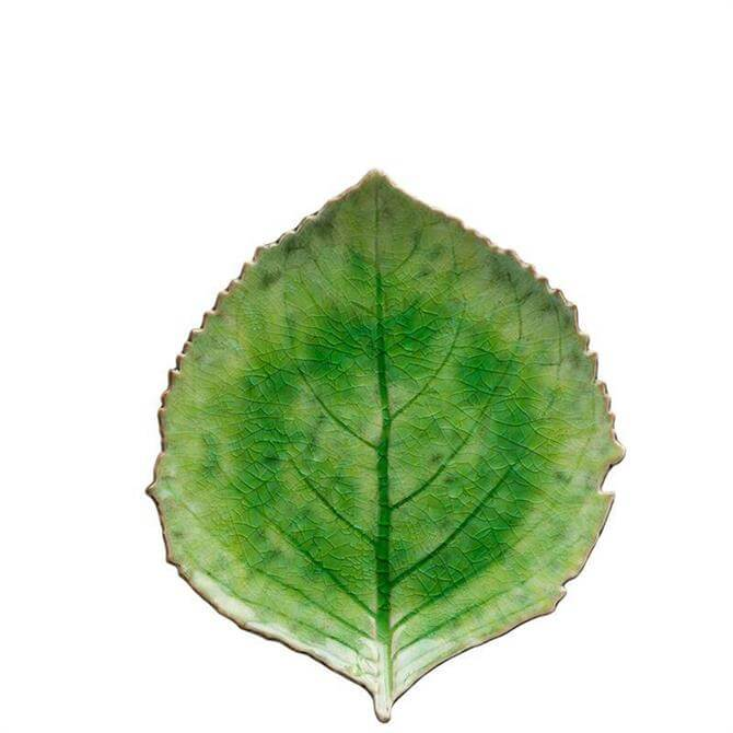 Costa Nova Tomate Hydrangea Leaf Dish