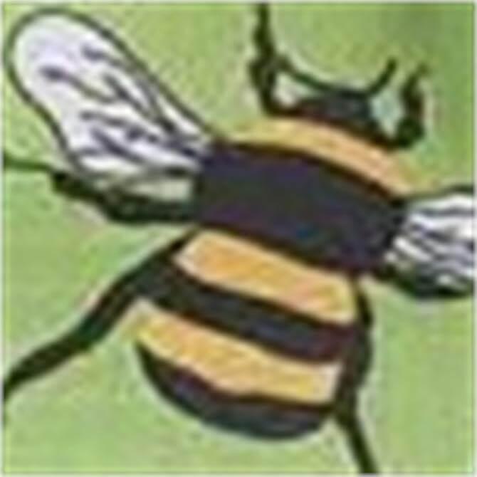 Eco Chic Foldaway Holdall - Bees