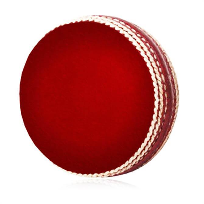 Salamander Cricket Infreddie Ball